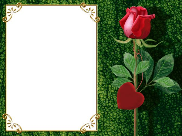 transparent green png photo frame with rose and heart