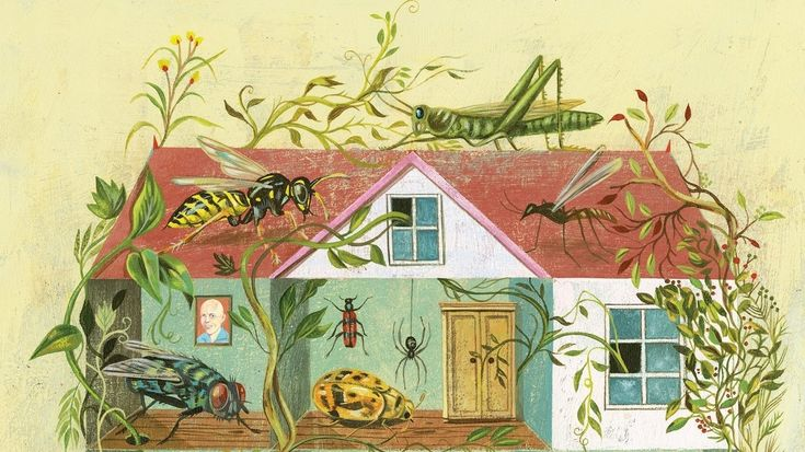 Counting The Bugs And Bacteria You Re Never Home Alone And That S Ok Home Alone Culture Art Terry Gross