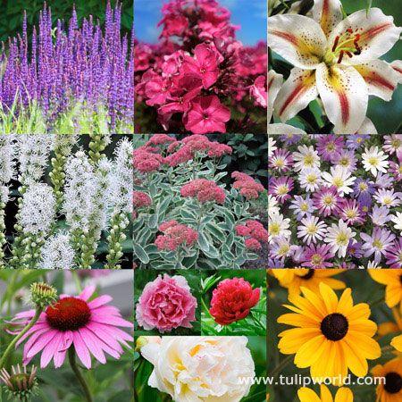 125 best Garden images on Pinterest