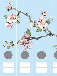 Ordnerrücken Kirschblüten hellblau