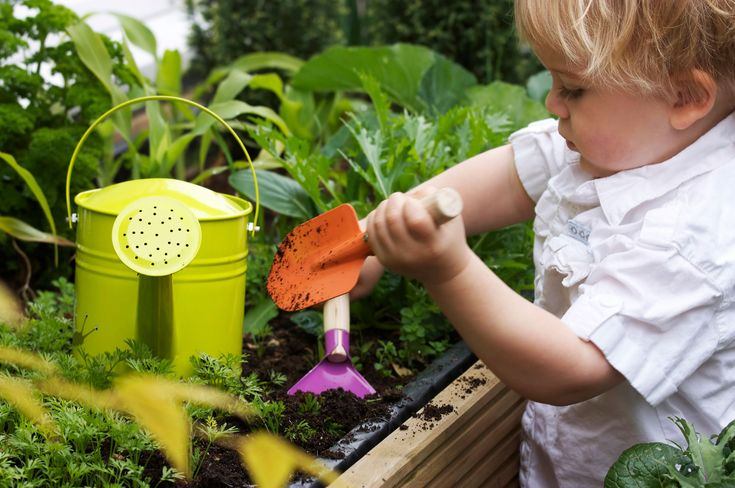 Your toddler will find lots of things to explore in the garden, and if you are prepared with a few toddler gardening activities, you can enhance his or her experience. Read more here.