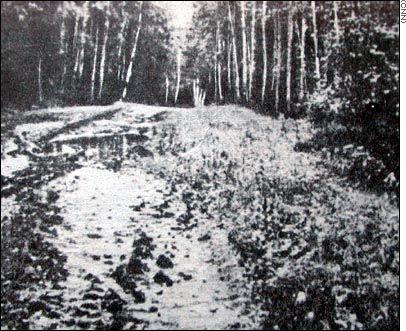 Romanov's Shallow Grave Site