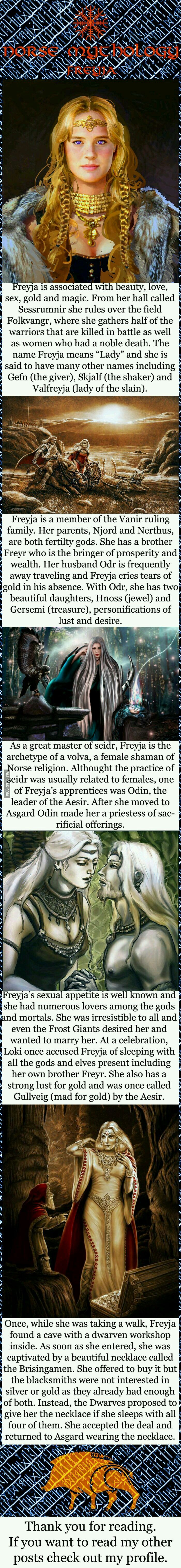 76 best fantasy images on pinterest warriors fantasy characters norse mythology freyja more they seem to think that freya and gulveig are the same person never heard that before fandeluxe Image collections