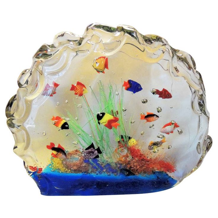 1000 images about murano art glass on pinterest fish for Glass fish tank