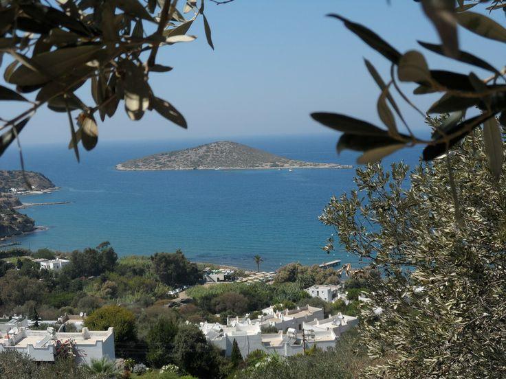 Ada by Sedat Şener on 500px #500px #Ada #Bodrum #Gumusluk #Manzara #island #isle