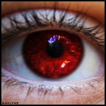 Violet Eye Color in Humans | ... of the 5 naturally occuring rarest eye colors would you like to have