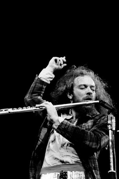 """""""The flute was an alternative to being a small fish in an increasingly bigger pool filled with a number of great guitar players"""" -Ian Anderson"""
