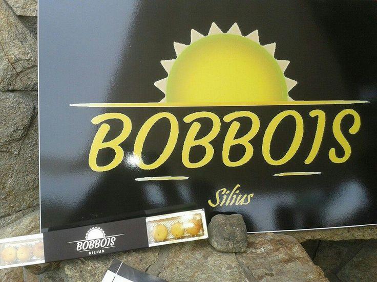 Bobbois Silius