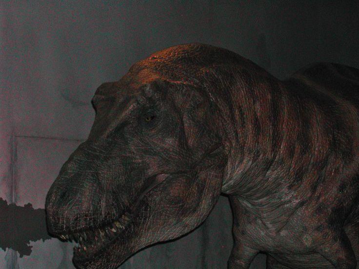 #Dinosaur #NaturalHistory #London