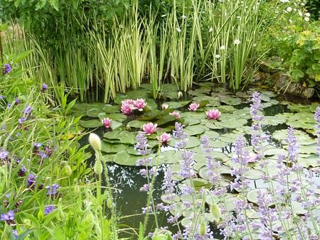 Le jardin du peintre André Van Beek    1 rue des Auges   60650 SAINT PAUL   Téléphone : 03 44 82 20 18