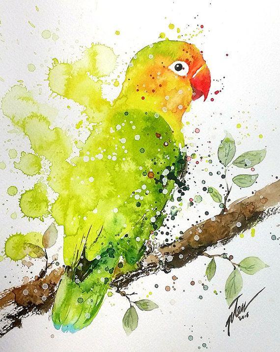 Commissie stuk van mooie huisdier vogels Taco