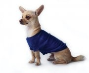 Super underware! Keeps your dog warm.