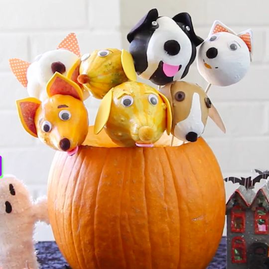 Instructions for making adorable pups from gourds. Easy and fun autumn craft for kids or families.