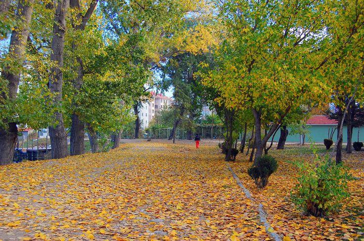 eskişehir'de sonbahar