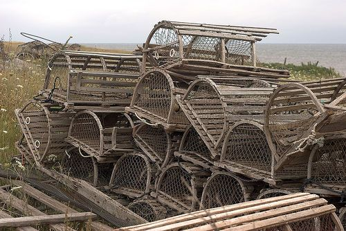 17 best images about lobster traps on pinterest vineyard for Sac bee fishing line
