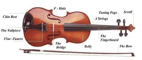 violin diagram - learning violin | Music to my ears | Pinterest ...
