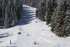 Ski Pun in Pamporovo