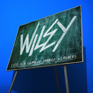 Wiley - 'Snakes & Ladders'