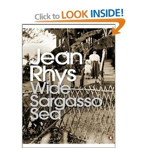 Wide Sargasso Sea (Penguin Modern Classics): Amazon.co.uk: Jean Rhys: Books