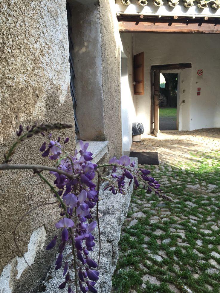 Il cortile della casa-museo di Grazia Deledda a #Nuoro