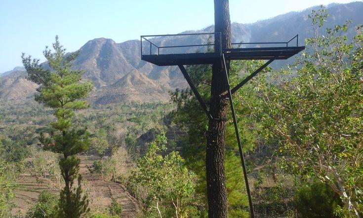 Gunung Beruk Ponorogo Jawa Timur