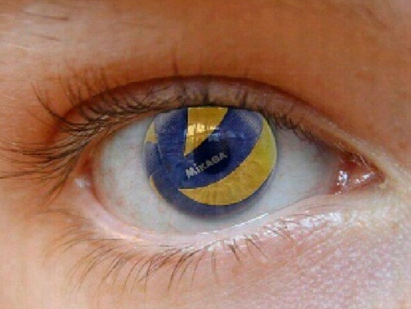 How does a Volleyball-Player see the world?