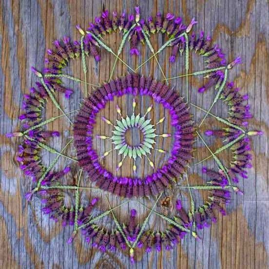 Arizona artist Kathy Klein channels her spirituality and love of nature into colorful, plant-based mandalas.