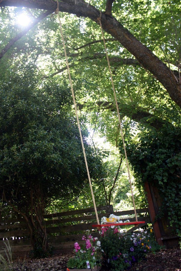 Tree Swings 35 Best Tree Swing Diy Images On Pinterest