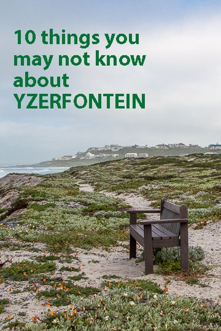 10 things you may not know about Yzerfontein, West Coast