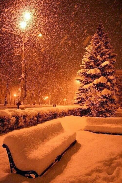 Such a beautiful snow scene.  So cool.  Look at the amount of snow on those benches!!!  Best kind of snowfall.