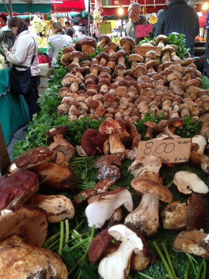 A fantastic display of fresh mushrooms at the Porta Palazzo food market