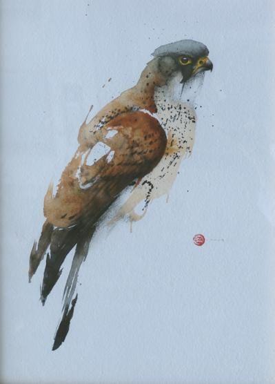 Falcon, Karl Martens, American born painter (b.1956). Watercolor
