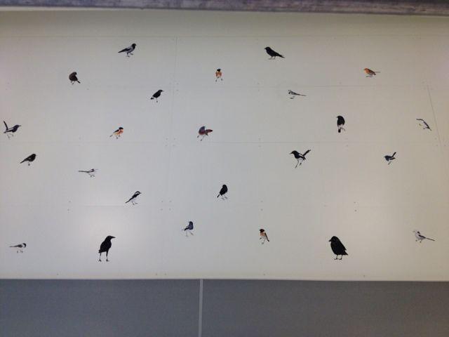 Och alla är dom fåglar.