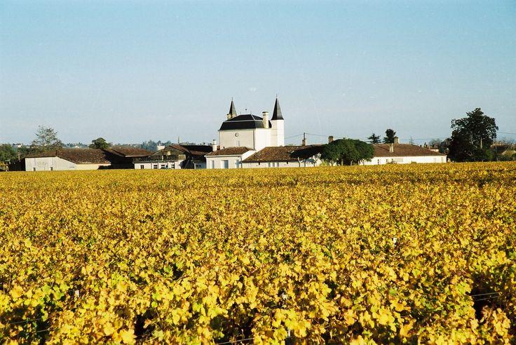 Venez découvrir le vignoble du Château Caillou. Pour cela il vous suffit de réserver simplement votre visite sur Wine Tour Booking. http://bordeaux.winetourbooking.com/fr/propriete/chateau-caillou-59.html