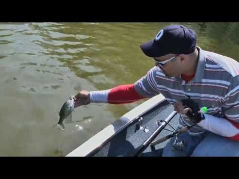 Spring Means Crappie Part 2 - YouTube