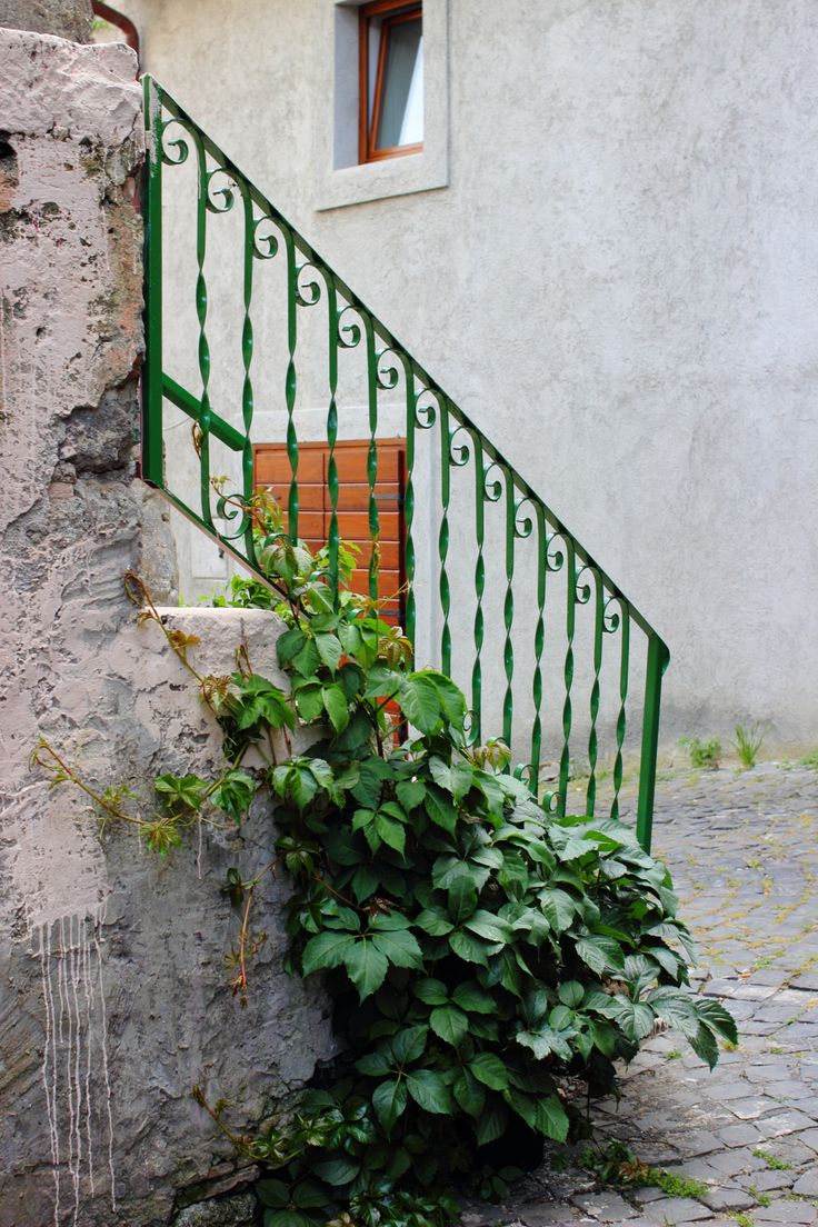 Bracciano 10 best doors and entrances- is this the cutest?