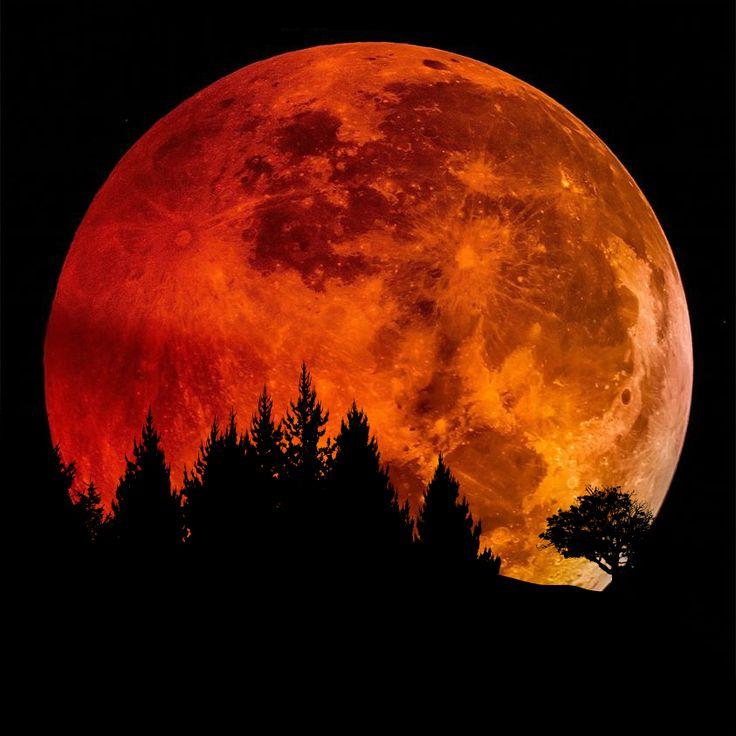 """Ne manquez pas la plus belle pleine #Lune de l'année dans la nuit de dimanche à lundi. Ce week-end, la Lune sera pleine et en plus elle sera très """"proche"""" de nous sur son orbite elliptique.  Pour plus de détail sur cette """" Pleine Lune """" ⬇️  https://gaia-esoterica.blogspot.fr/2017/11/correspondances-symbolisme-phases-lunaires.html   #GaiaEsoterica #WilliamSK #Esoterisme #Spiritualité #Magie #Sorcellerie #PleineLune #Lunaison"""
