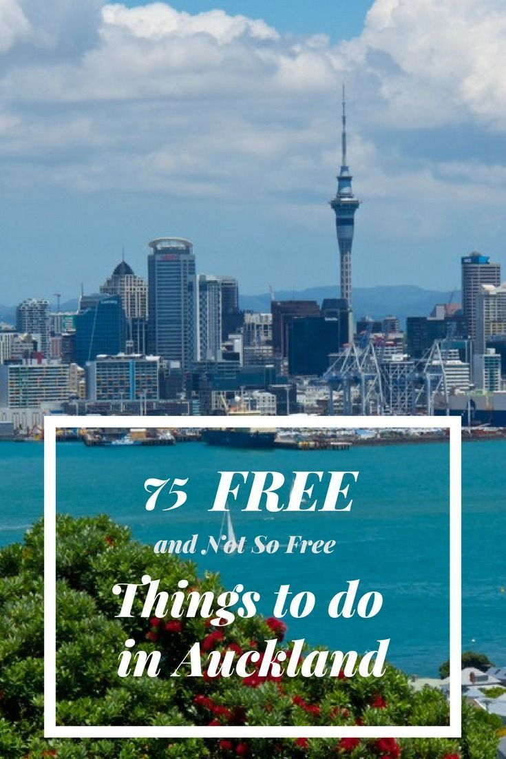 140 Best Auckland New Zealand Things To Do Images On