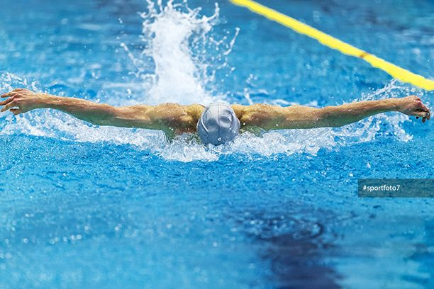 athlete male swimmer swimming in pool butterfly