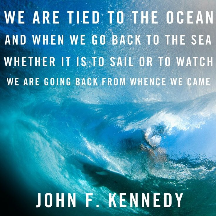 Inspirational sailing quote
