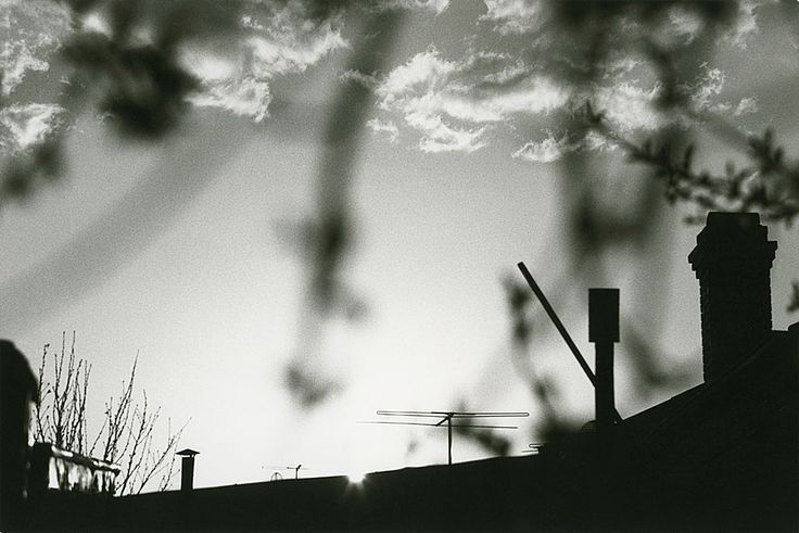 Mark Strizic Untitled  1959 from the series Views from my window gelatin silver print, printed 1983