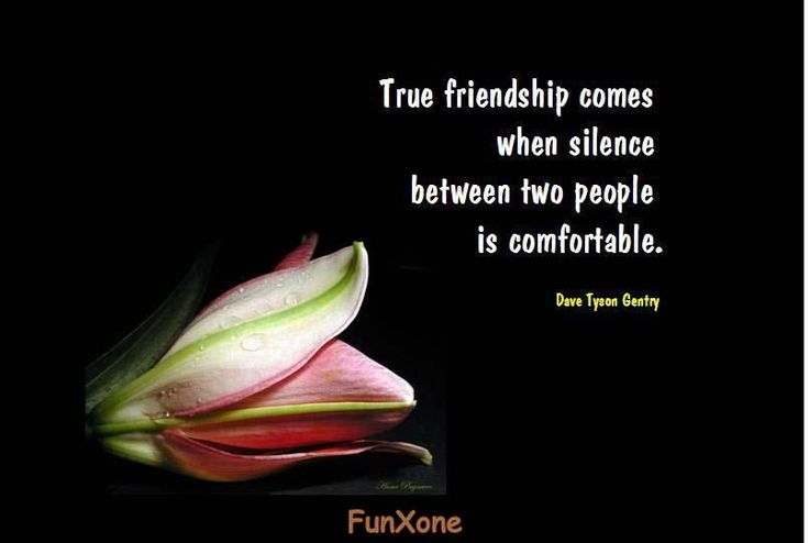 Inspirational Quotes About Friendship | posted in inspirational tagged friendship inspirational quote 1 ...