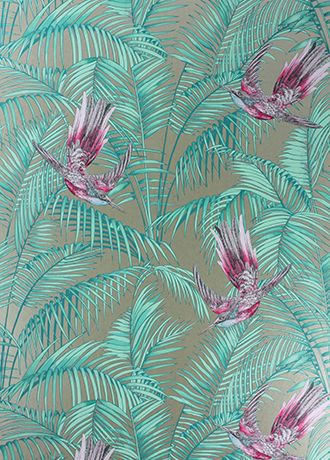 Sunbird wallpaper from Osborne & Little by Matthew Williamson this photo doesn't do it justice it's amazing :) you should view the book so you can see the entire collection :)