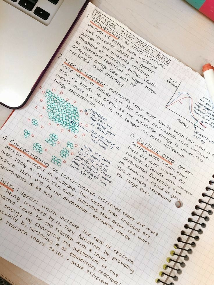 𝑷𝒊𝒏𝒕𝒆𝒓𝒆𝒔𝒕 𝒉𝒐𝒏𝒆𝒆𝒚𝒋𝒊𝒏 Study