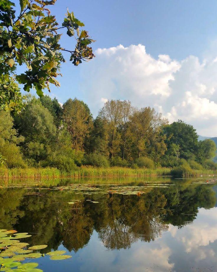 Herbst im Sablatnigmoor in der Region Klopeiner See - Südkärnten  #kärnten #carinthia