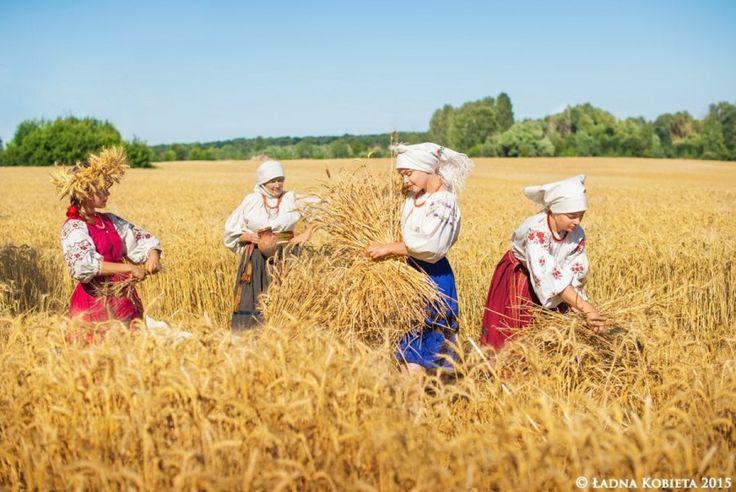 Хліборобство, як окремий світогляд. Українські традиції, пов'язані з хлібом