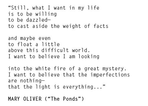 """""""Still, what I want in my life is to be willing to be dazzled...."""" Mary Oliver"""