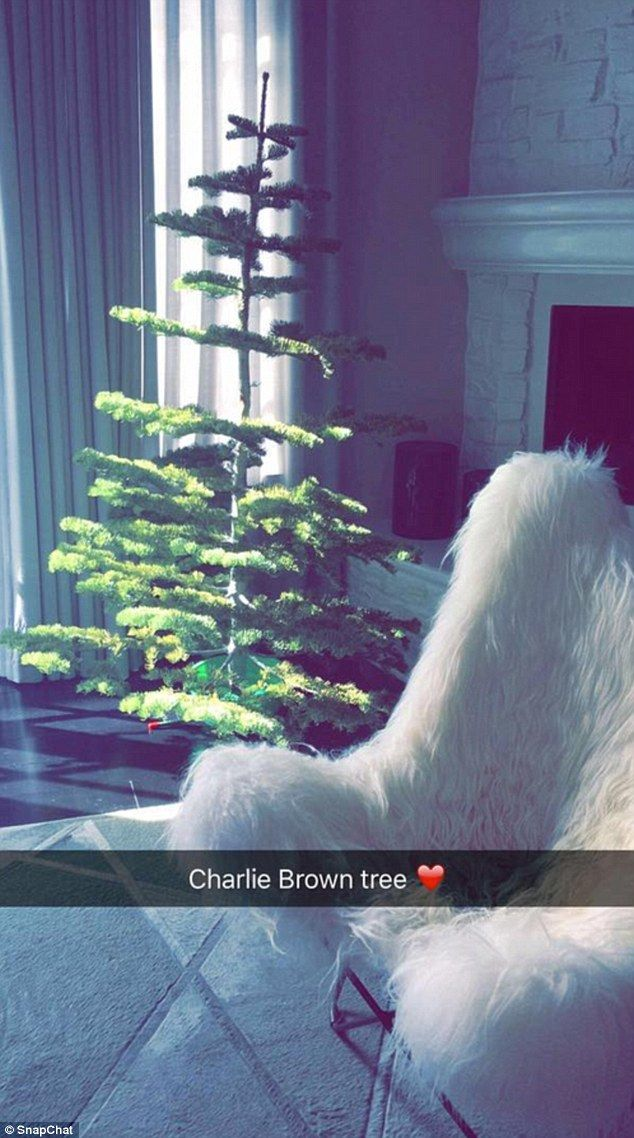Kylie Jenner shows off rather scrawny \'Charlie Brown Christmas tree ...