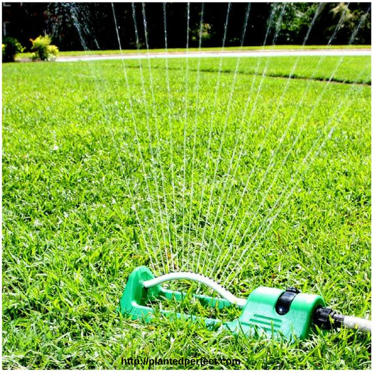$19.97   Planted Perfect Easy Oscillating Sprinkler System
