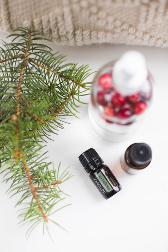 44 best dōTERRA Essential Oils Christmas Gift Ideas images on ...